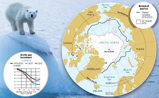 Slikovni rezultat za arktik