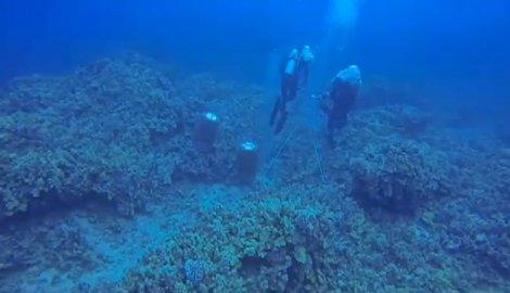 na-vodi_koralni-greben-3