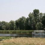 na-vodi_zasavica-1