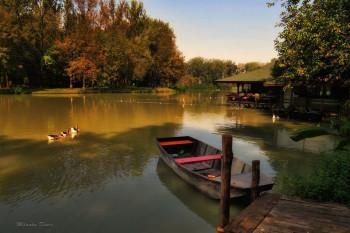 na-vodi_jesen-milnaka-dimic