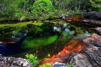 na-vodi_reka-KanjoKristalesKolumbija