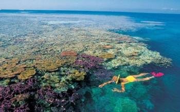 na-vodi_koralni-greben