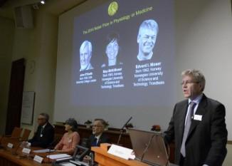 Sweden Nobel Medicine