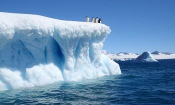 na-vodi_Antarktik-glecer