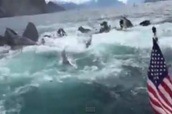 na-vodi_kitovi