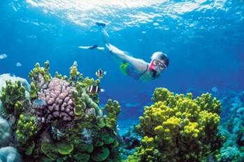 na-vodi_veliki-koralni-greben3