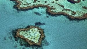 na-vodi_veliki-koralni-greben