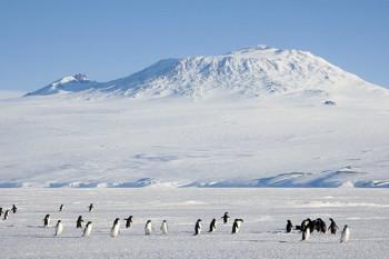 NA_VODI_antartik